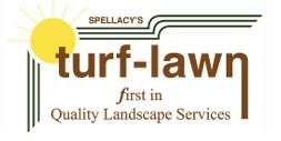 logo-spellacy